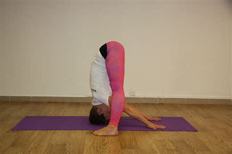 imagenes de gimnasia yoga free stock photo of asana gymnastics pose
