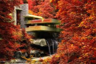 Forest House fallingwater rachel cohen photography