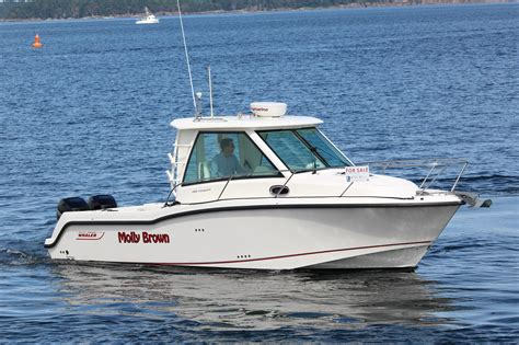 fishing boat for sale victoria bc 2014 boston whaler 285 conquest boat for sale 2014 motor