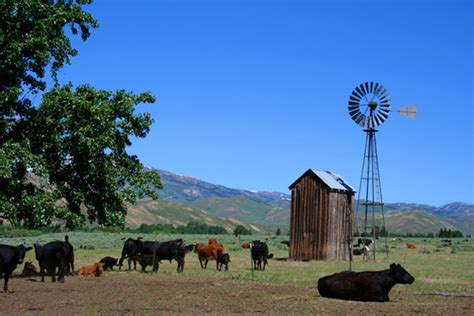 Personalized Farm & Ranch Insurance Coverage   Colorado