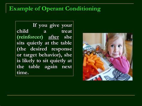 b f skinner s operant conditioning