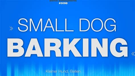 barking sounds small barking sound effect kleiner hunde bellen