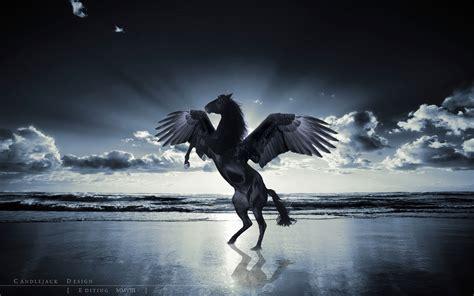 black unicorn hd wallpaper unicorn horse magical animal pegasus ocean beach f