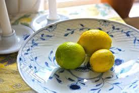 Bibit Tanaman Jeruk Purut Dengan Pot pengobatan kanker dengan jeruk purut tanaman bunga hias