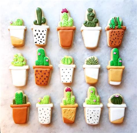 How To Propagate A Succulent Cookie And Kate - 214 best cactus themed images on