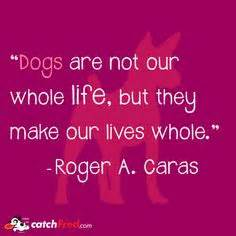 design graphics bradner ohio 1000 images about dog quotes on pinterest dog quotes