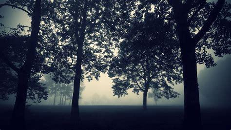 imagenes de paisajes naturales jpg 20 fondos de pantalla de paisajes naturales en hd taringa