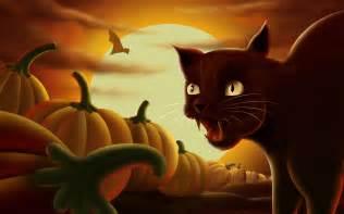halloween black cats black cat amp halloween pumpkins wallpapers hd wallpapers