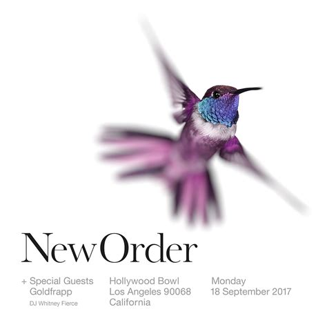 The New Order new order new order