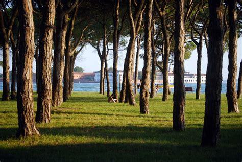 giardini pubblici venezia giardini pubblici di venezia alla ricerca verde in laguna