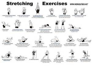 Weight Bench Workout Routine Beginners Stretching Exercises Gods Earth Minerals Vegetables