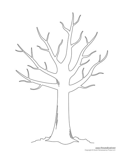 free tree templates free coloring pages of bare tree outline