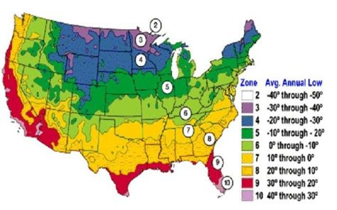 gardening zones usa planting zones usa garden yard ideas