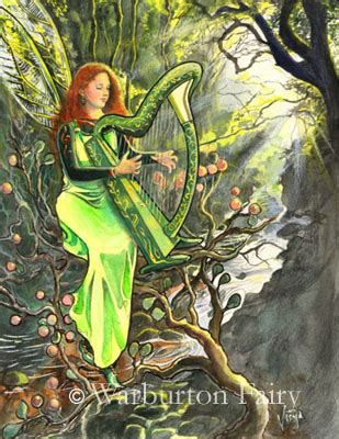 fairies a guide to the celtic fair folk books most mysterious places to visit ireland