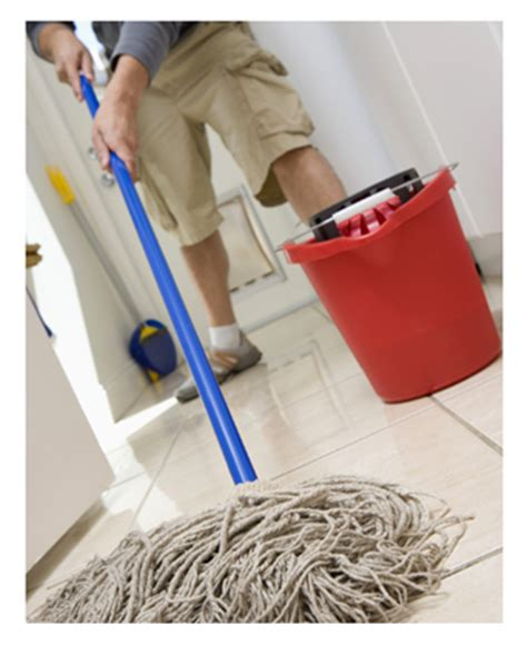 Mopping Bathroom Floor by Colonel Mustard In The Library With A Mop Daily Plate