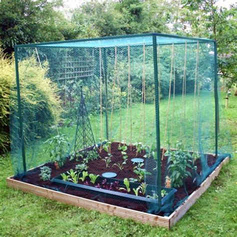 Fruit Vegetable Cages Anti Bird Protection For Crops Gardening Netting For Vegetables
