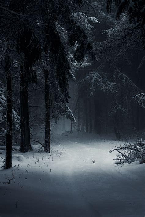 https www pinterest com sleeping forest https www pinterest com dcindcmedia