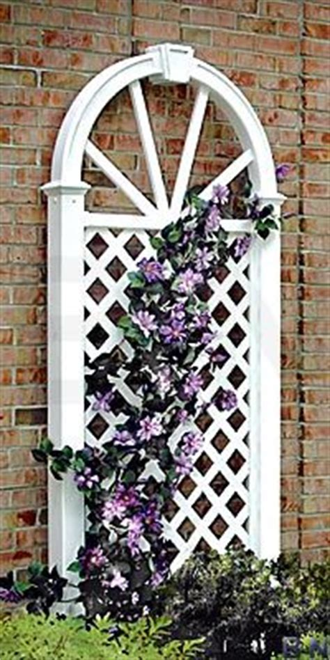 Garden Wall Arch Kit Best 25 Wall Trellis Ideas On Trellis Diy