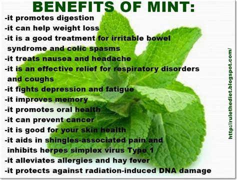 Mint Detox Benefits by Bld With Bob And Julie Cucumber Lemon Orange Mint