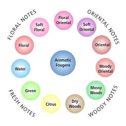 7 Scents For by Fragrance Wheel
