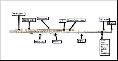 flute diagram labeled name the parts of a flute search engine at search