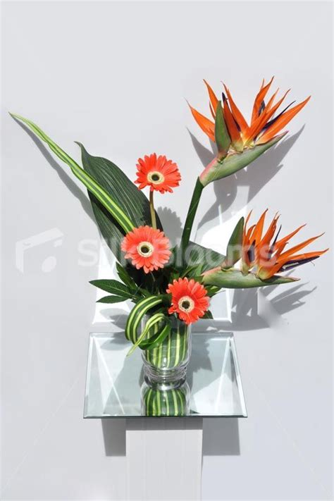 Bird Of Paradise Flower Arrangement Vase by Birds Of Paradise Real Touch Gerbera Orange Floral Vase