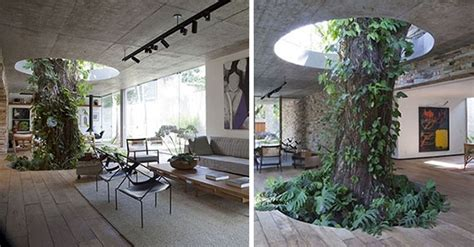 interior design plants inside house