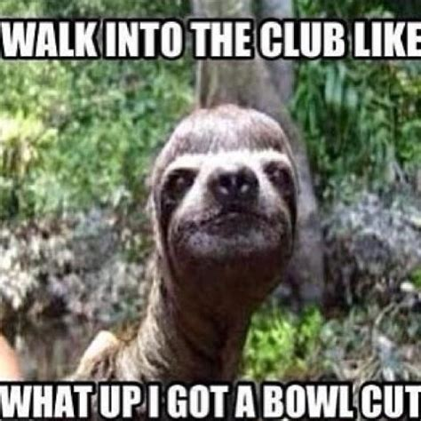 The Sloth Meme - sloth meme