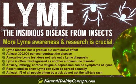 how can a live with lyme disease it s a lyme living with lyme disease healthy concepts with a nutrition bias