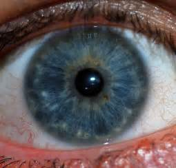 colored part of the iris цвет глаз это что такое цвет глаз