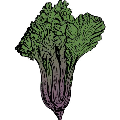 vegetable garden clipart vegetable garden clip