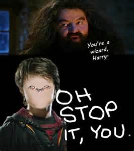 You Re A Wizard Harry Meme - shella putriana juli 2012