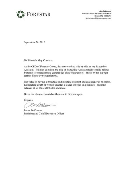 letter recommendation ceo