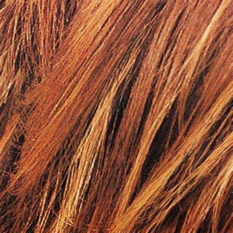 loreal paris couleur experte express hair color 6 light l oreal paris couleur experte express hair color 6 4