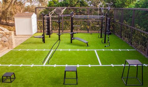 backyard gym ideas the t rex fts outdoor limitless