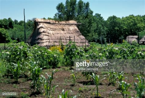 Shawnee Gardens by Prehistory Garden Of The Shawnee Indians Stock Photo Getty Images