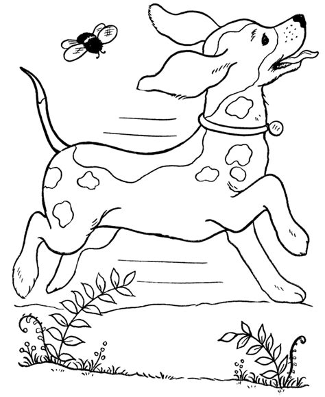 coloring pages on dogs free printable dog coloring pages for kids