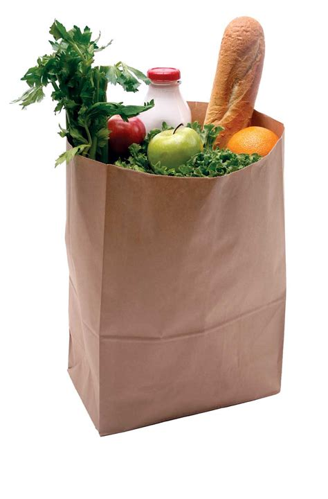 grocery bag clipart paper grocery bag clipart clipart suggest