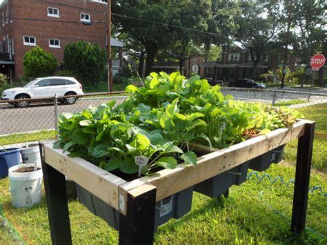 self watering garden containers self watering veggie table