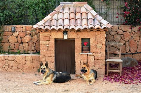 Colors To Paint Your House 5 ideas for decorating a dog house mega bored