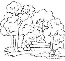 forest color forest coloring page coloringcrew