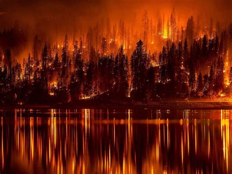 oregon wildfires protecting   forest fire air