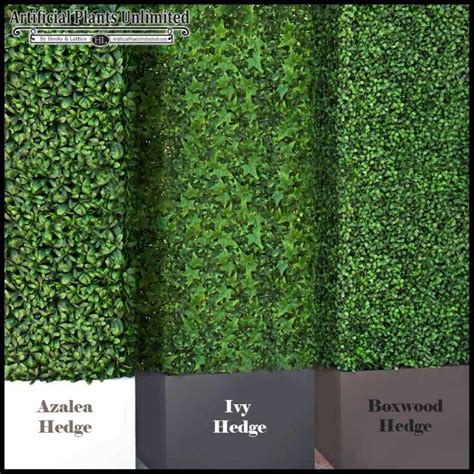 garden hedge types artificial hedges with three types of foliage azalea