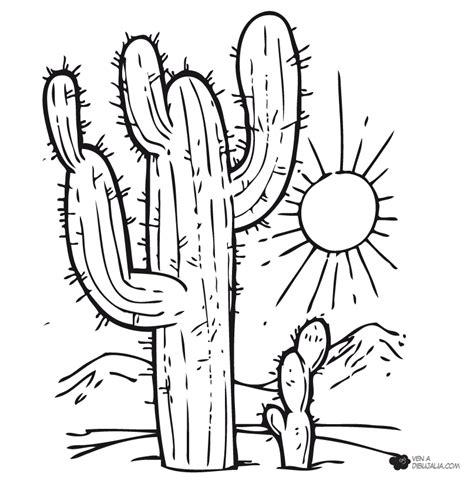 dibujo de cactus con sombrero para colorear cactus en el desierto dibujalia dibujos para colorear