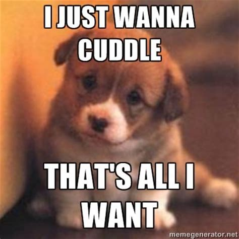 Cuddle Meme - can i cuddle with you puppy meme google search humor