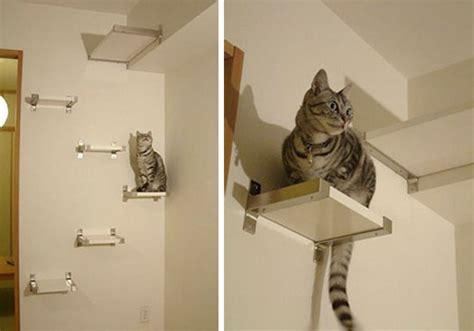12 Diy Cat Condos That Are Hip And Modern Diy Cat Shelves