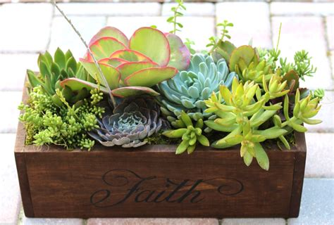 succulent planter 15 natural and handmade living succulent decorations