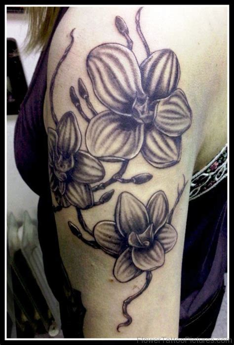 tattoo orchid arm 100 fabulous orchid flower tattoos