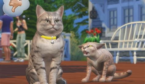 cats and dogs sims 4 the sims 4 next expansion cats dogs adds pets introduces veterinary clinics