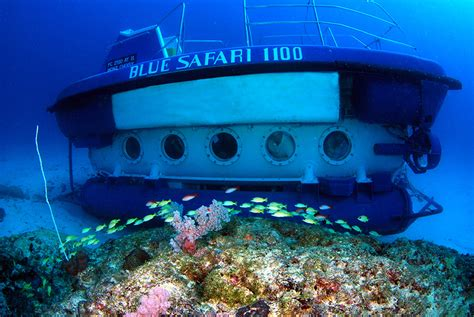 Syafira Blue by Blue Safari Our Fleet Blue Safari Our Submarines